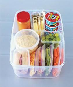 snack-container_300